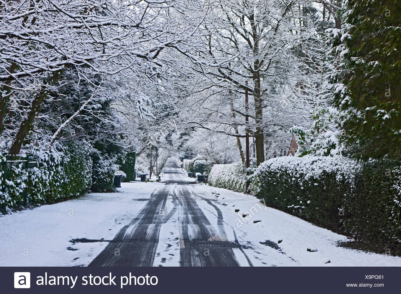 wintery road at Hookheath in Woking/ England - Stock Image
