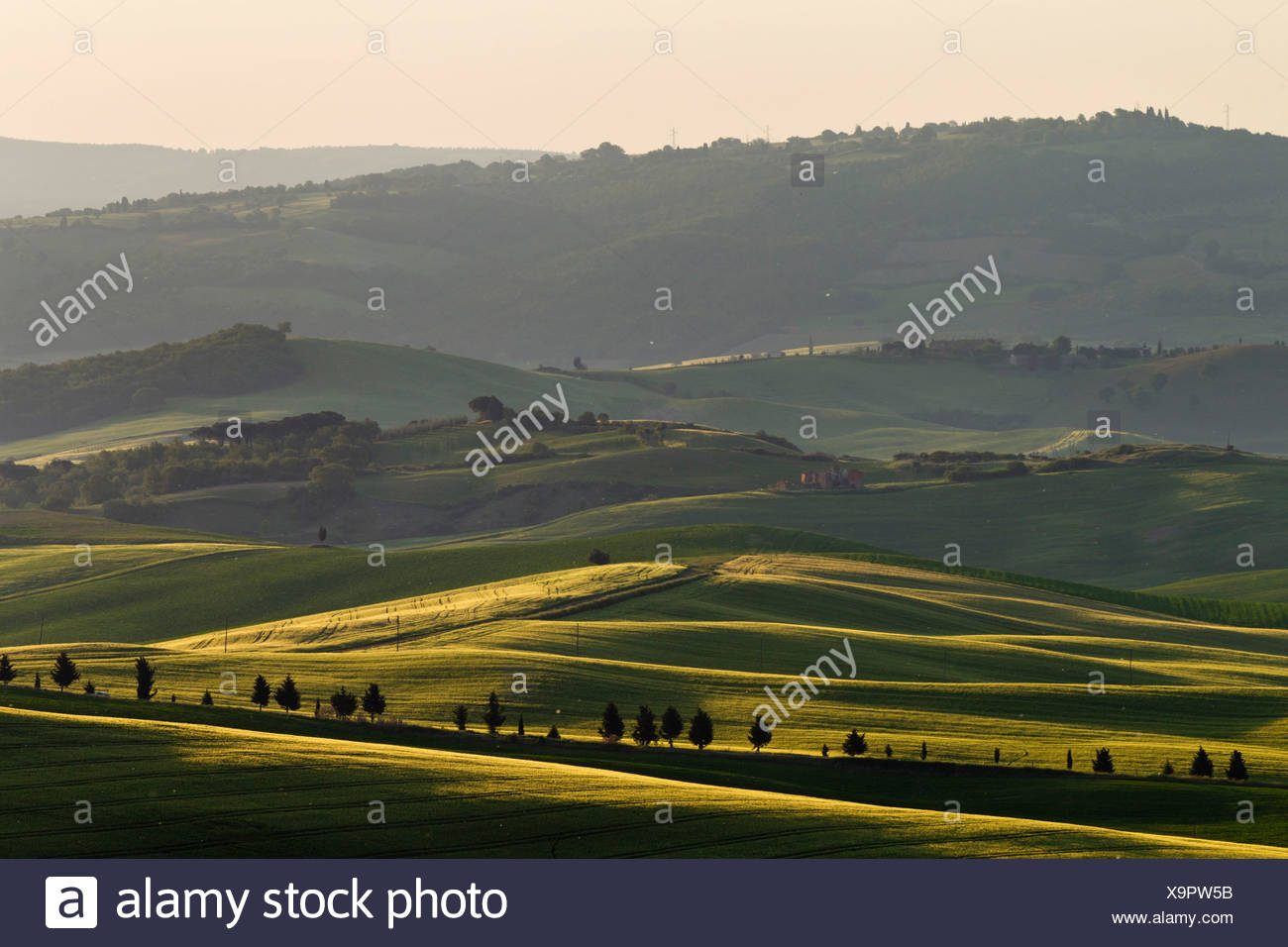 Italy, Tuscany, Crete, View of hilly landscape - Stock Image