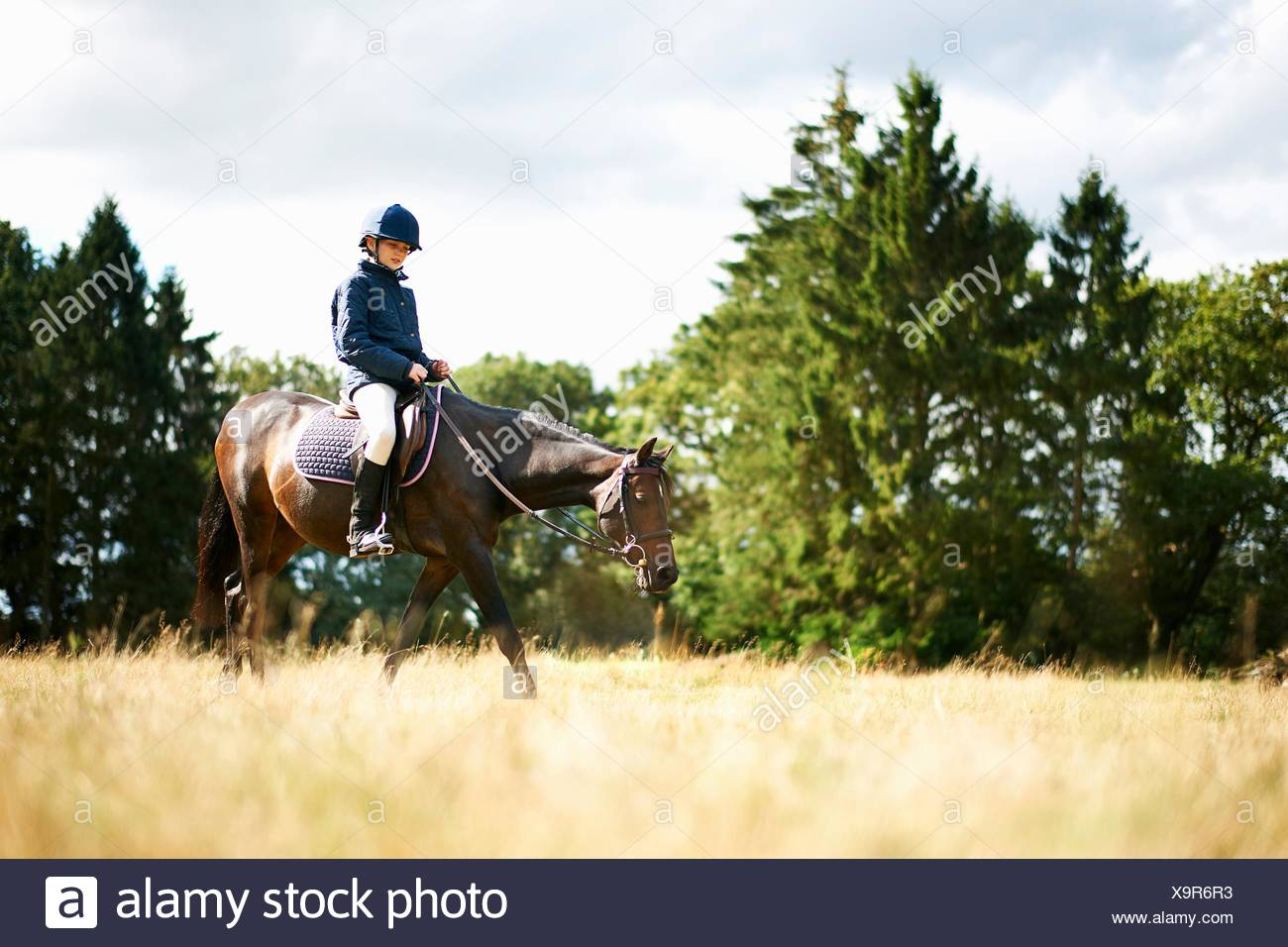 Girl horseback riding in field - Stock Image