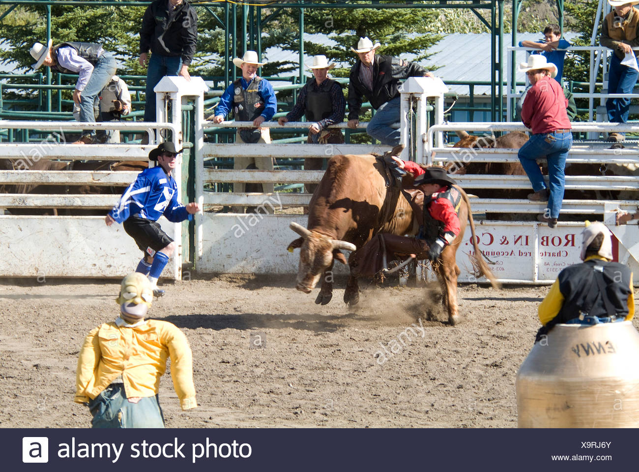 rodeo, Pincher Creek, Alberta, Canada - Stock Image