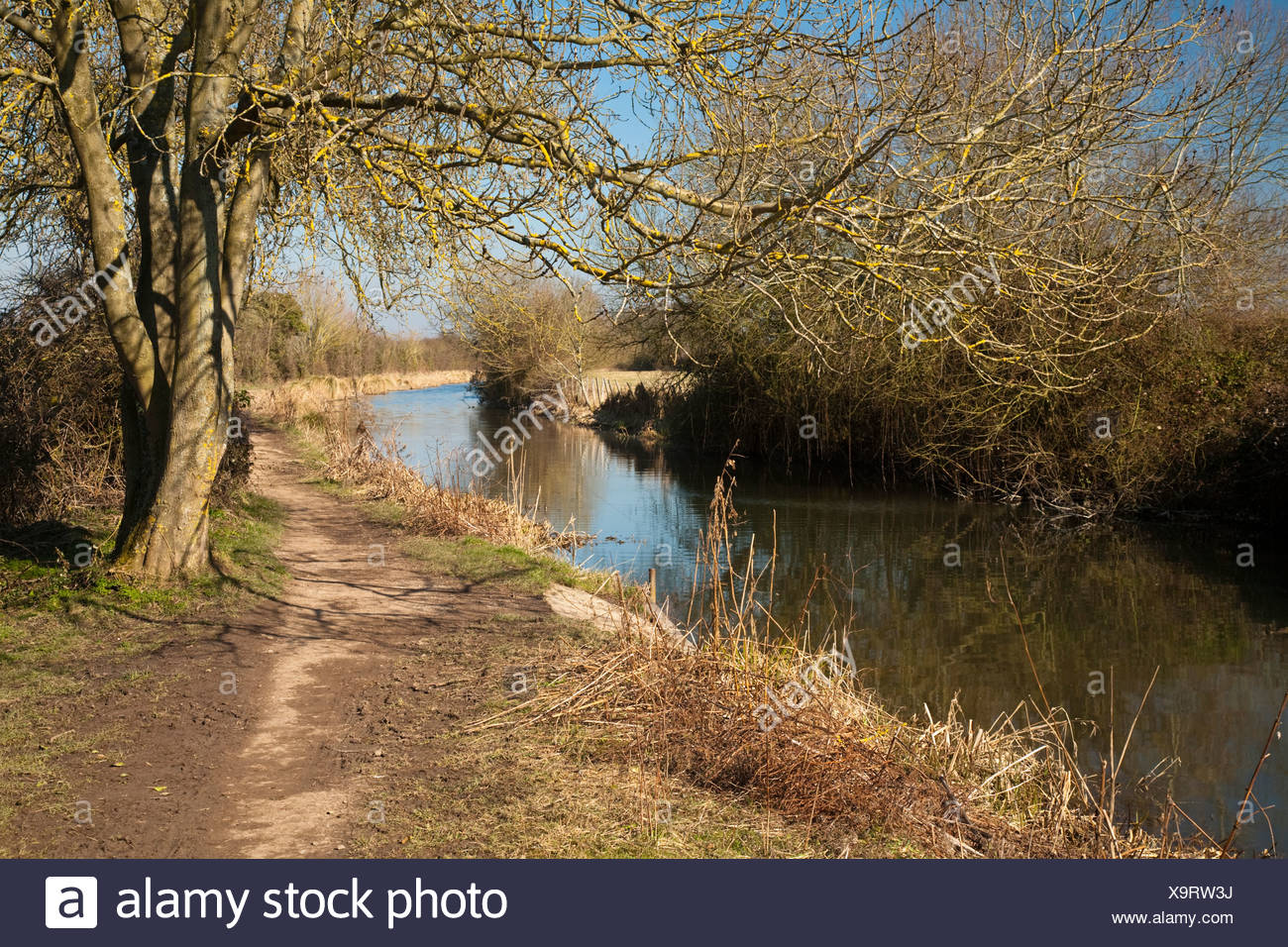 The Basingstoke Canal in Odiham, Hampshire, Uk - Stock Image
