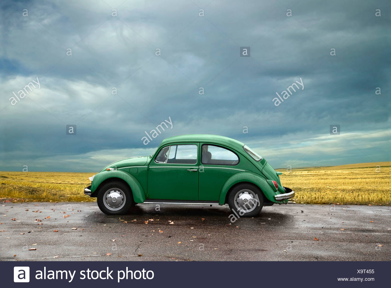 Green VW beetle parked near a field on an overcast day - Stock Image