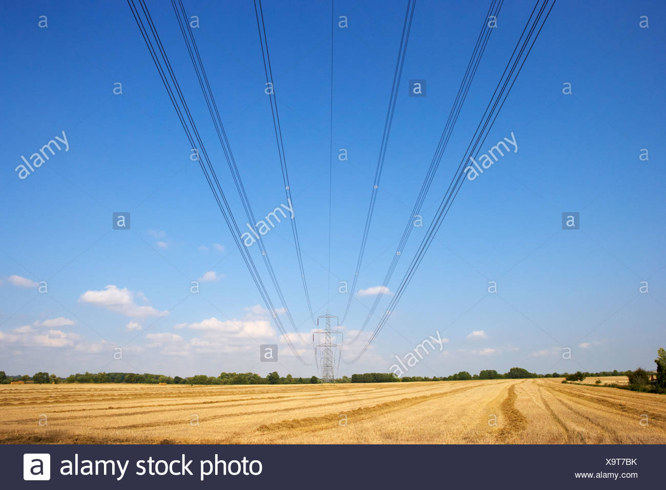 Electricity pylon and lines in countryside - Stock Image