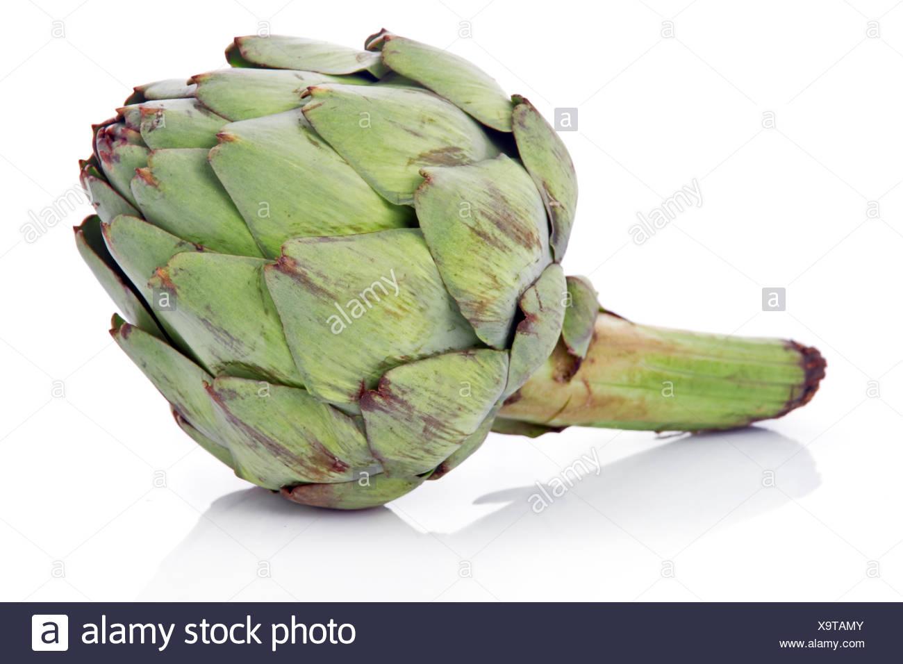 Ripe green artichoke vegetable isolated - Stock Image