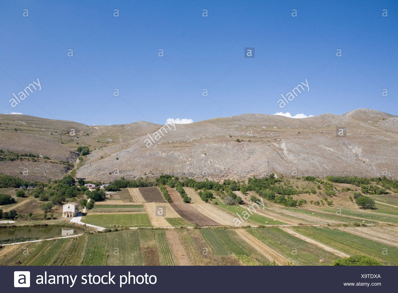 Italy, Santo Stefano, Sassonia, agricultural fields - Stock Image