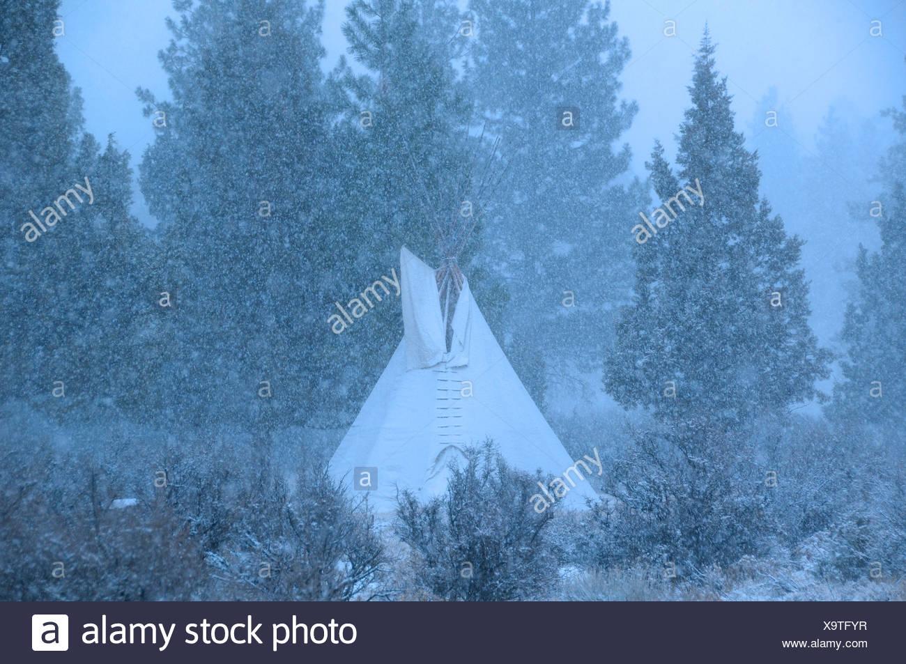 Tipi, snow, High Desert, Oregon, USA, United States, America, - Stock Image