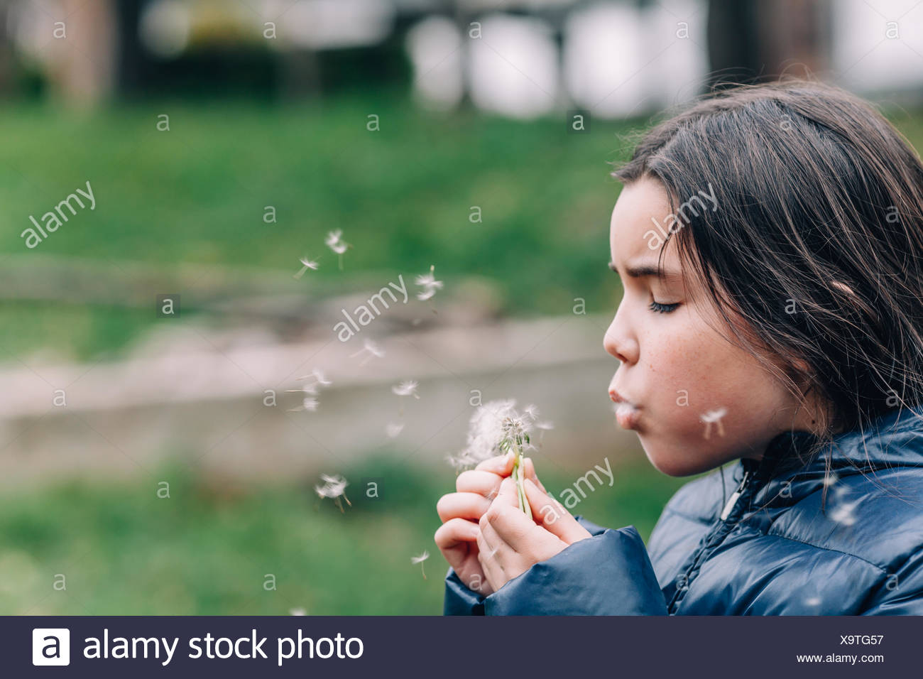 Girl blowing dandelion - Stock Image