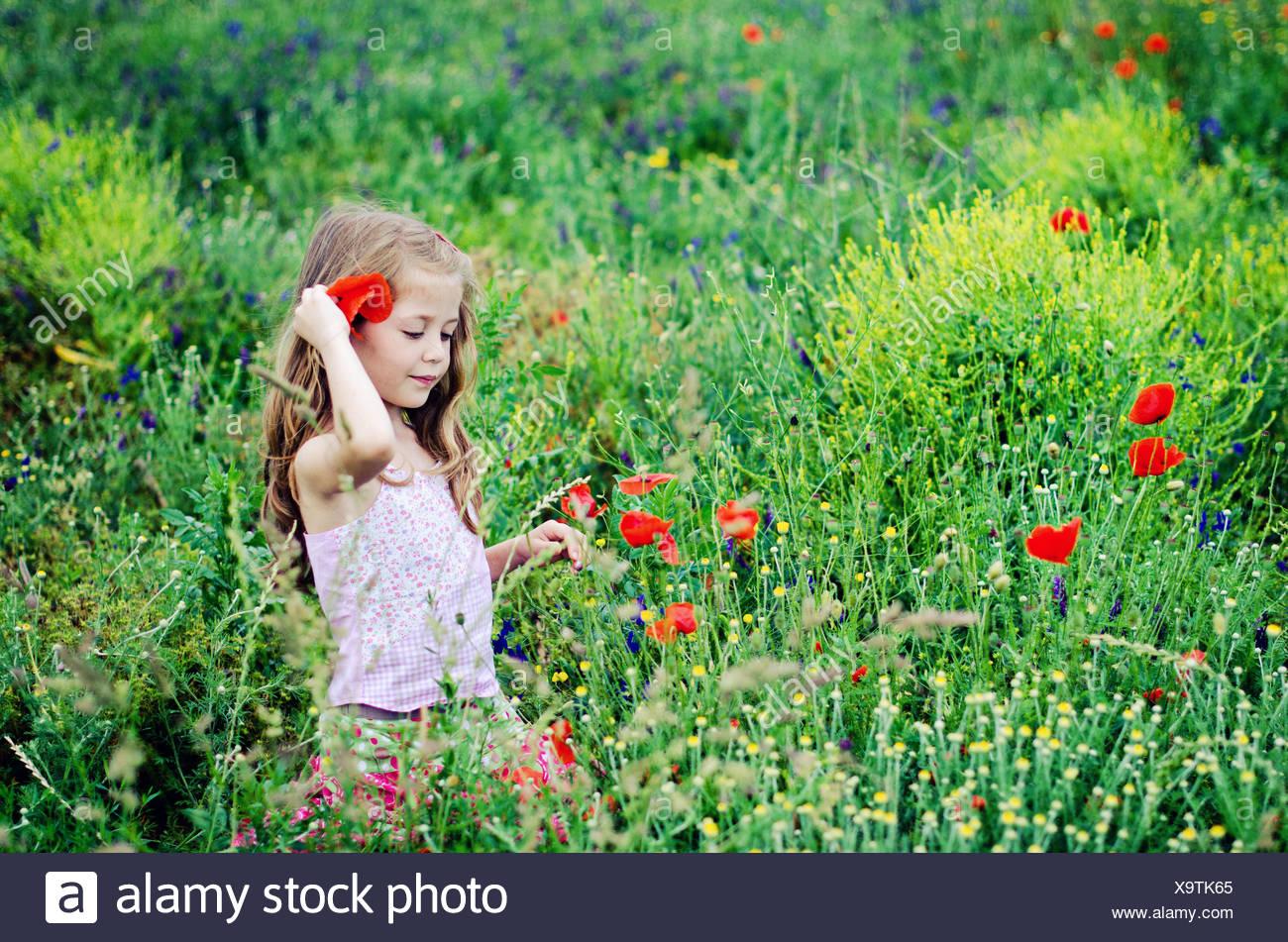 Girl walking through a poppy field - Stock Image