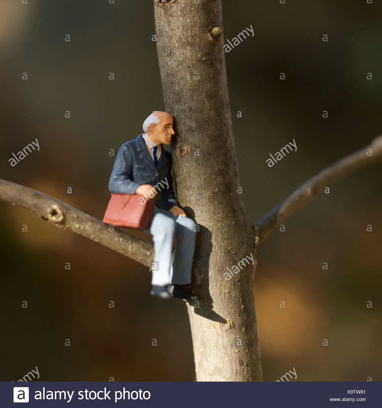 Solitary elderly male figure alone sitting in tree with briefcase - Stock Image