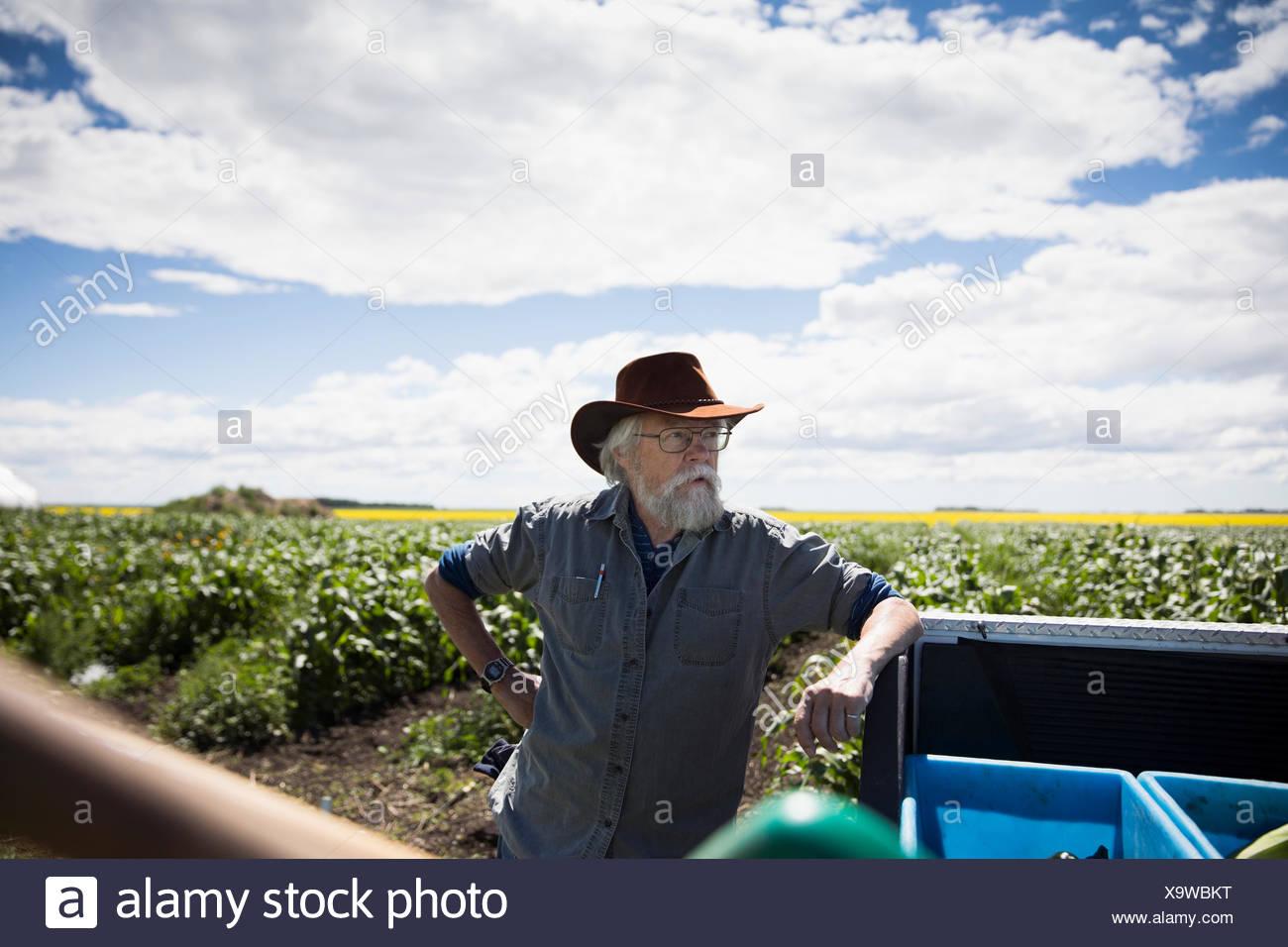 Senior male farmer leaning on truck on sunny farm - Stock Image