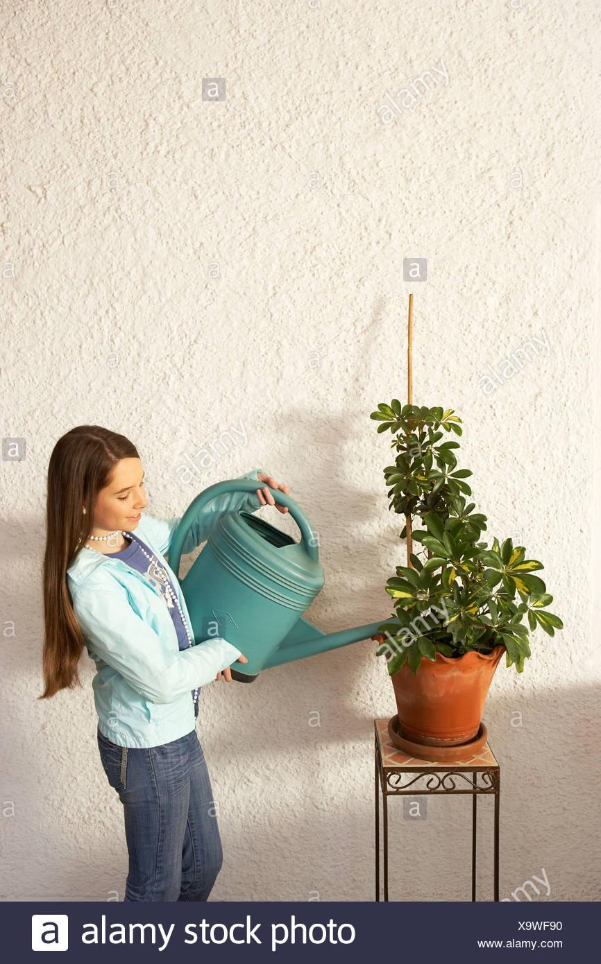 Girl (12-14) watering pot plant Stock Photo