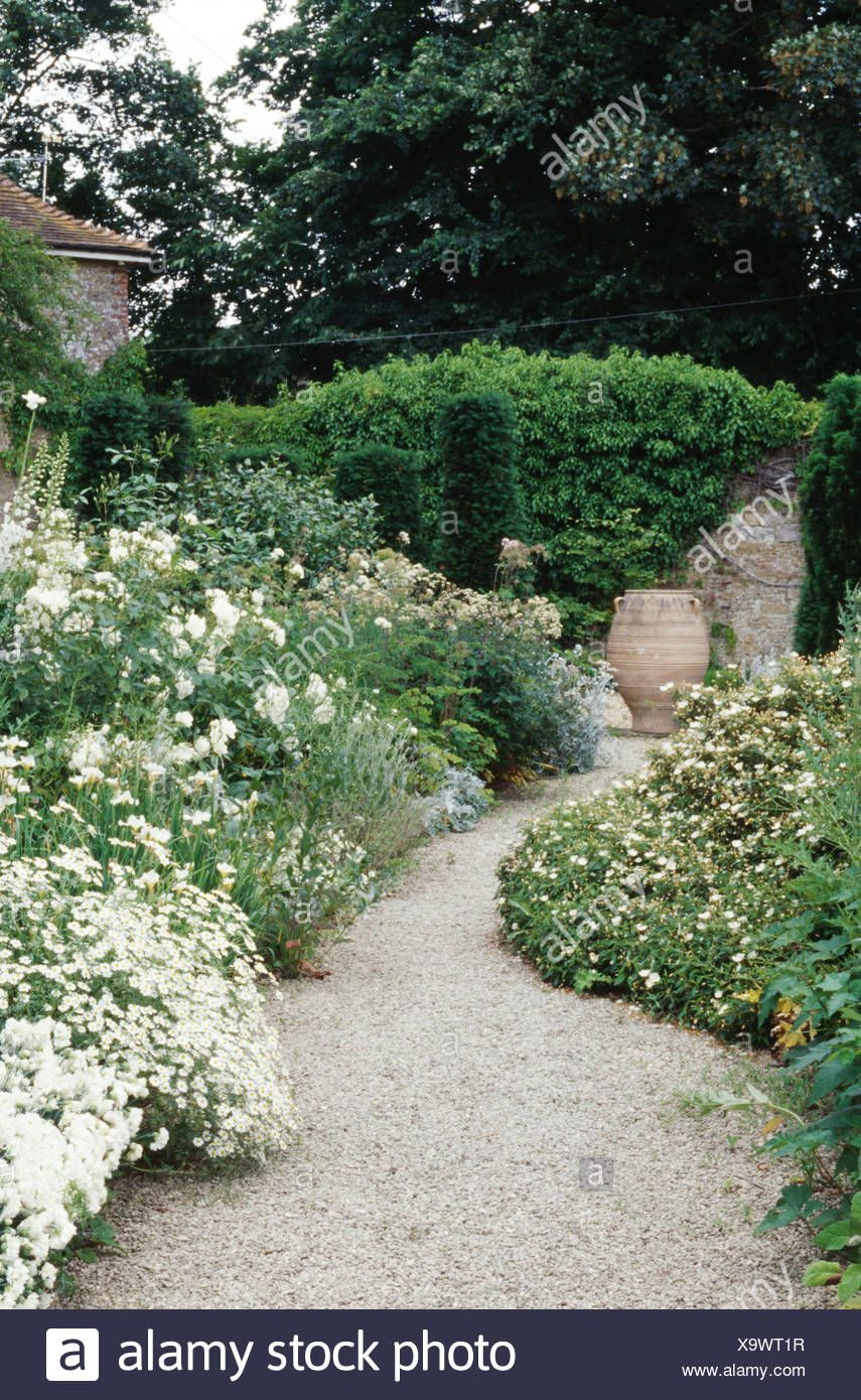 Gravel Path Through Borders With All White Plants In Large ...