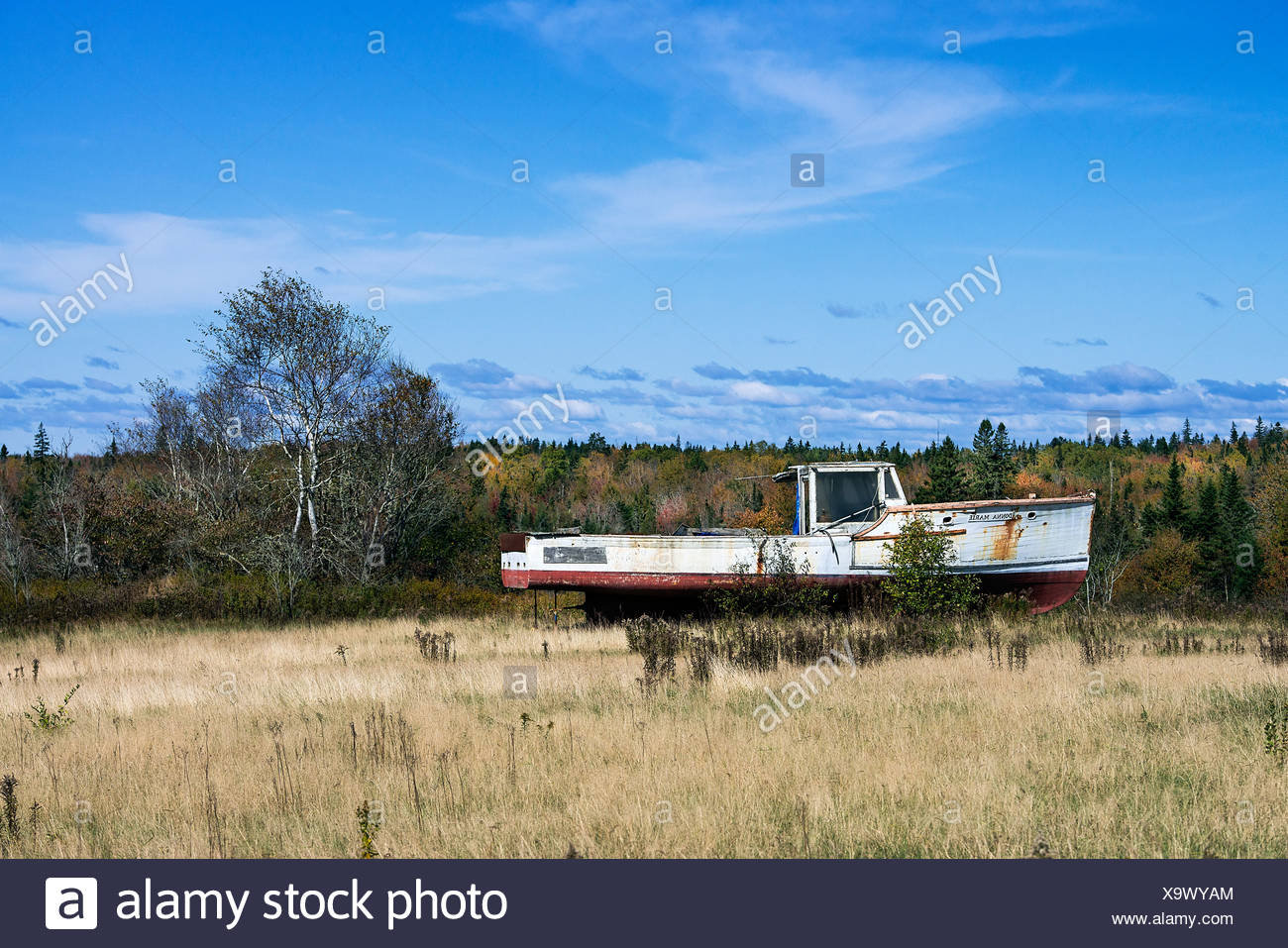Abandoned lobster boat in a rural field, Maine, USA - Stock Image