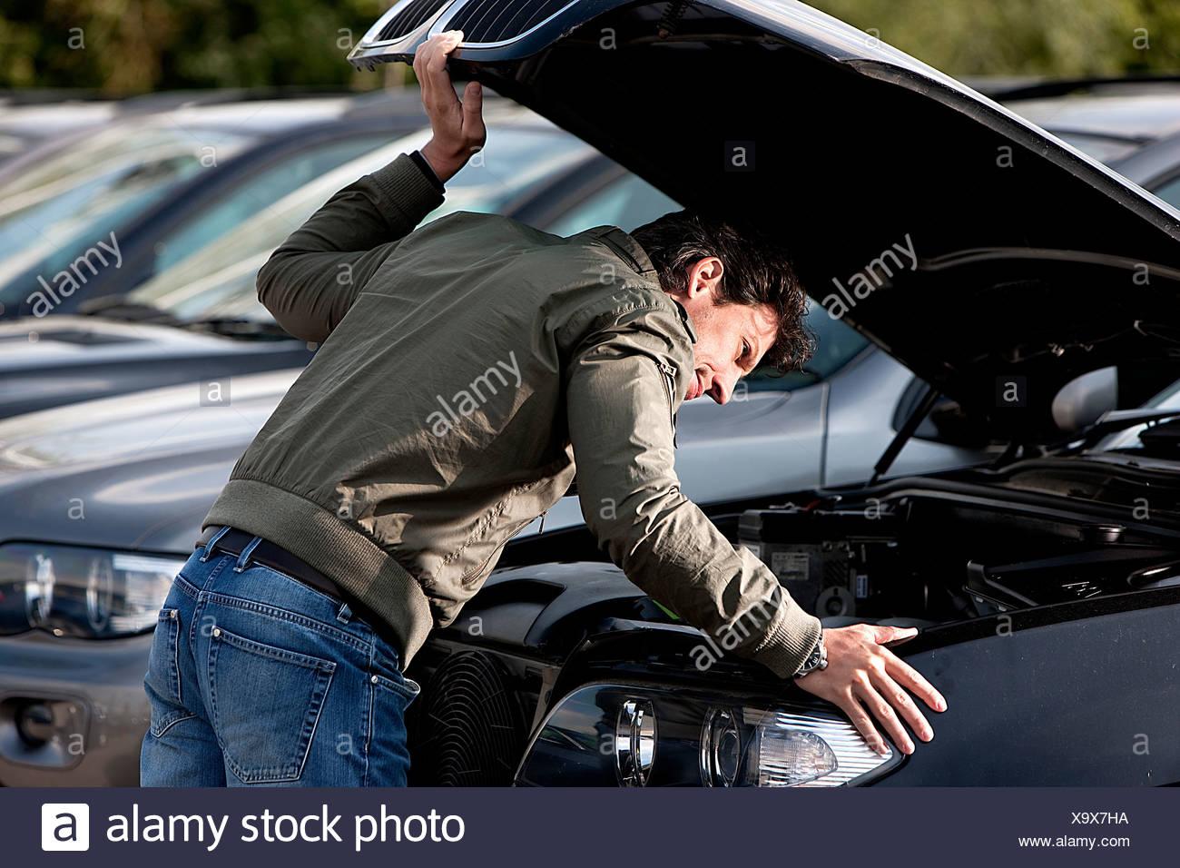 Local Car Dealer Inventory at NewCars.com