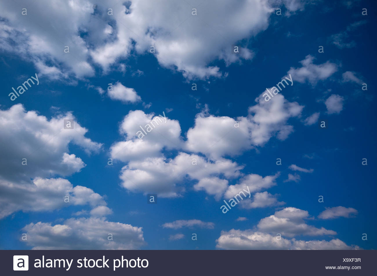 Many cumulus clouds in a blue sky - Stock Image