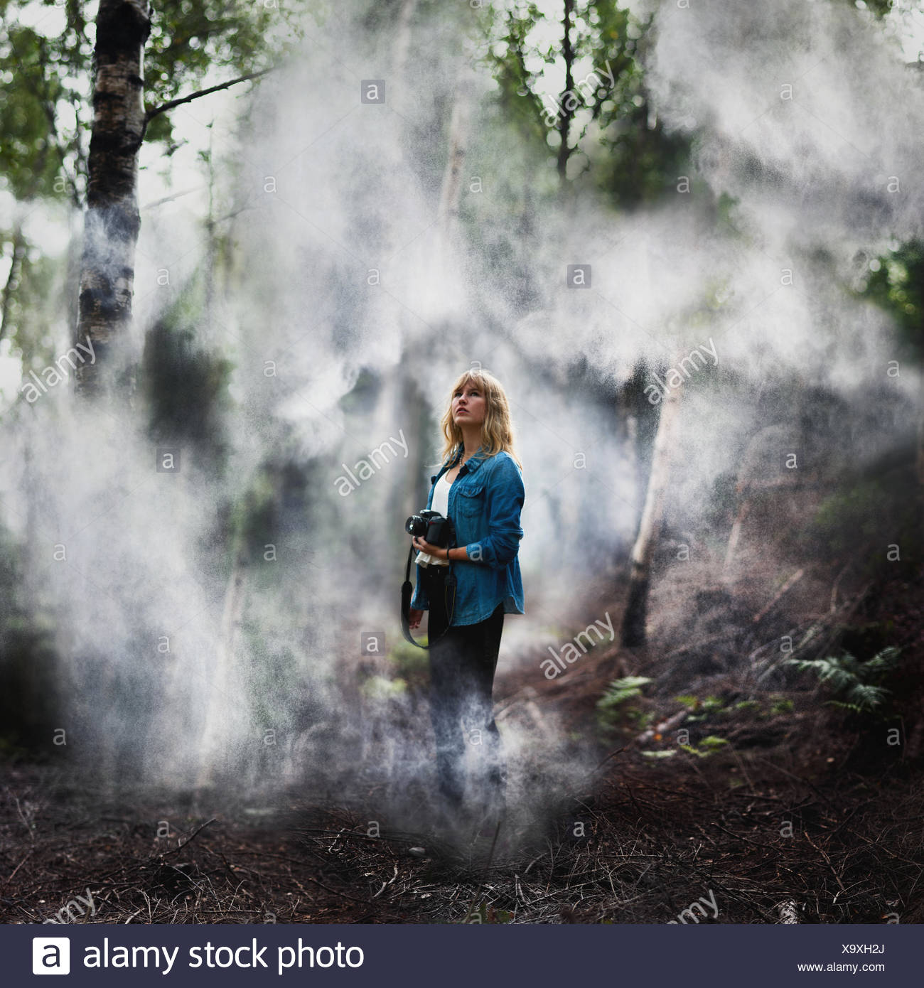 Woman With Camera In A Misty Forest - Stock Image