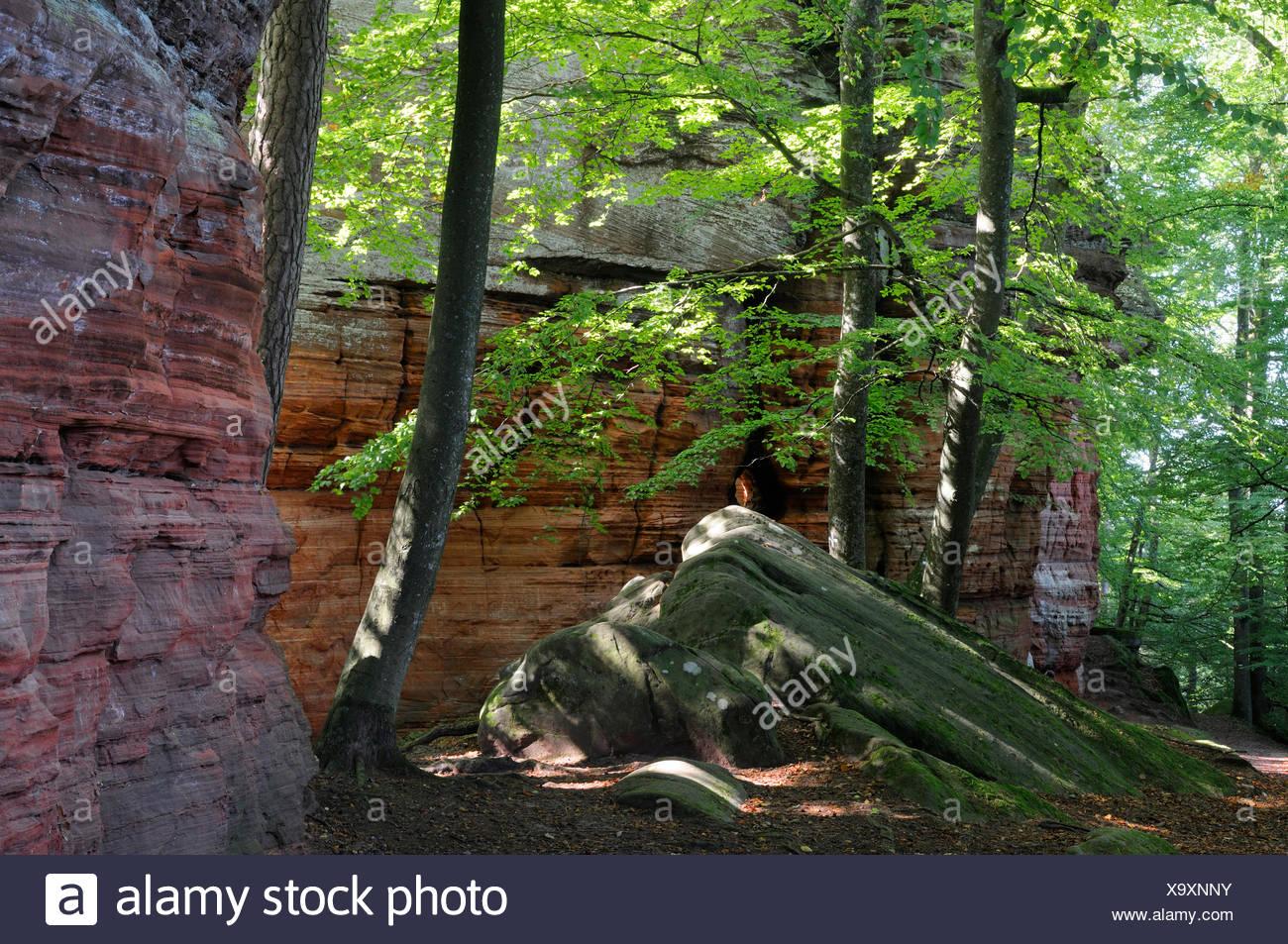 Sandstone rocks Alignment - Palatinate Forest Germany Altschlossfelsen - Stock Image