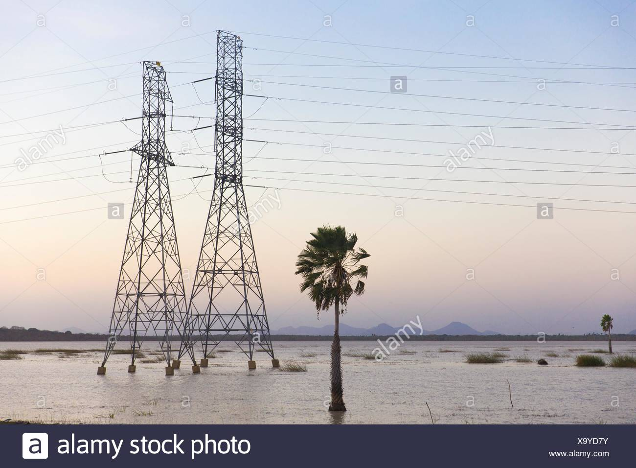 Electricity pylons in waterlogged field, Taiba, Ceara, Brazil Stock Photo