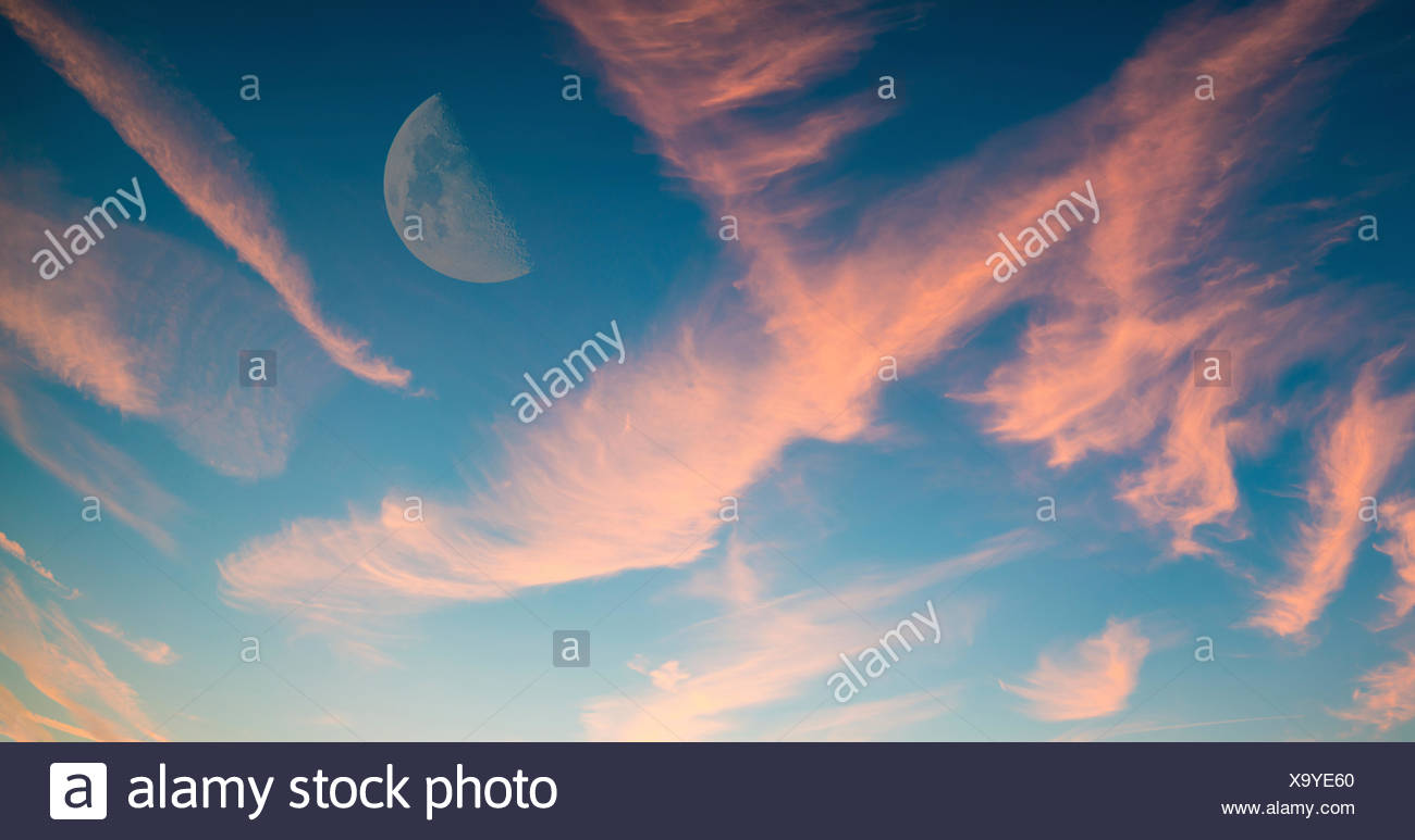 Half moon in sky with pink clouds. - Stock Image