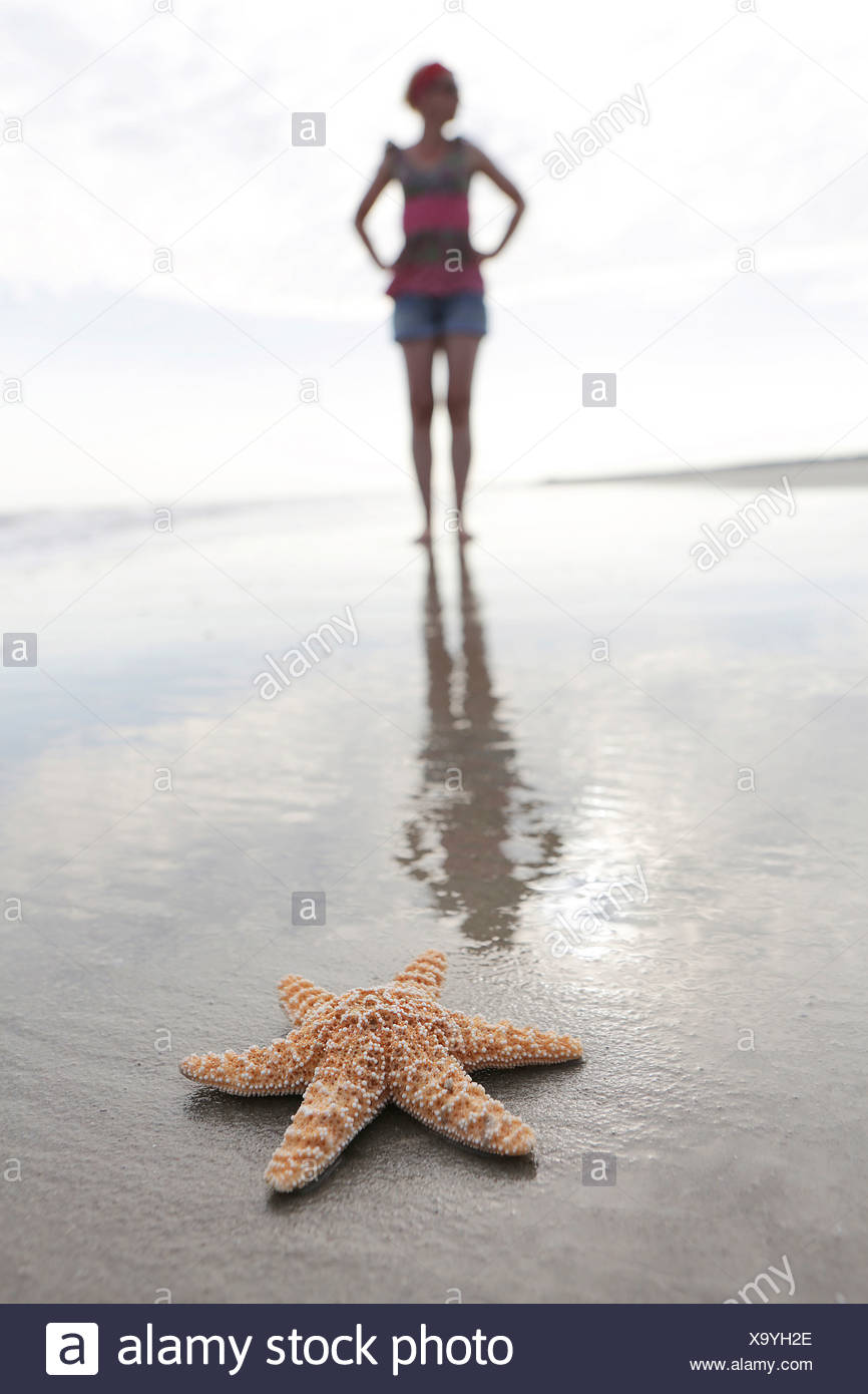 Germany, Lower Saxony, East Frisia, Langeoog, sea fish and silhouette of a woman at the beach - Stock Image
