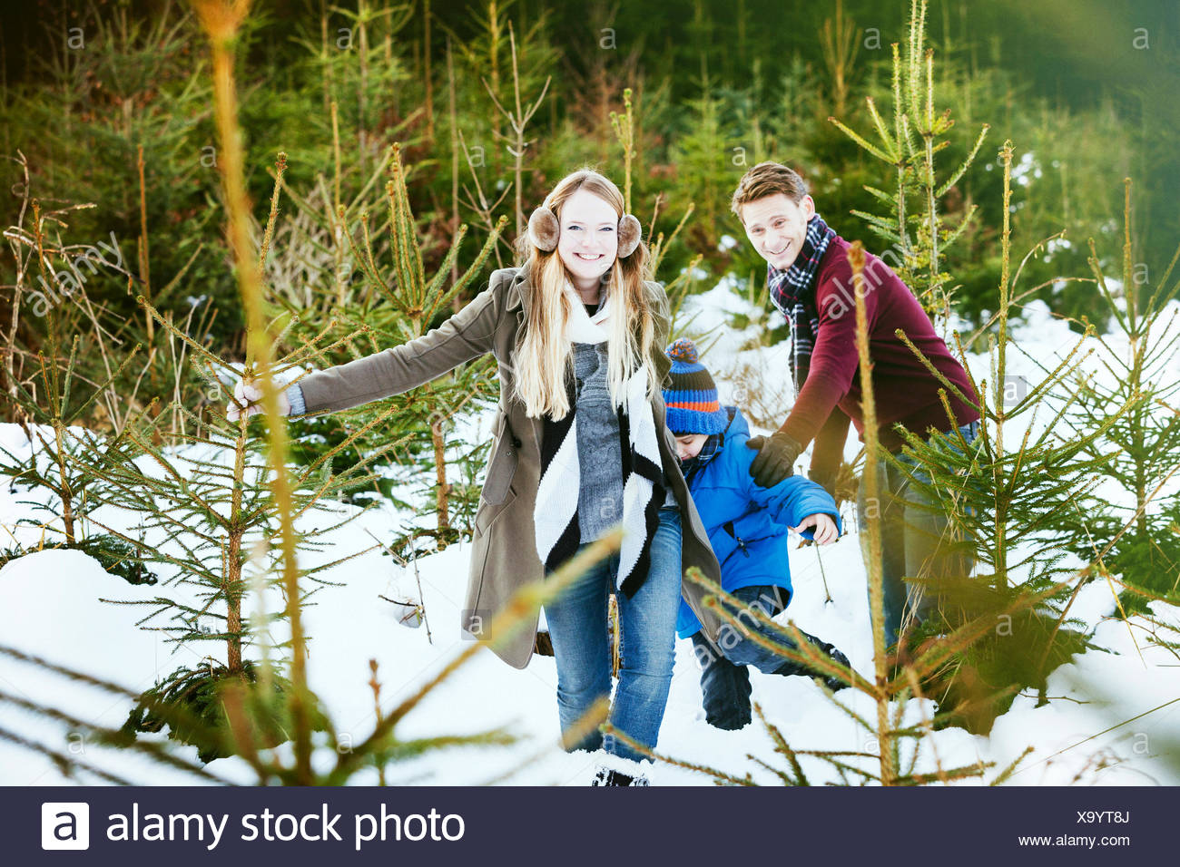 Family searching for the perfect Christmas tree Stock Photo