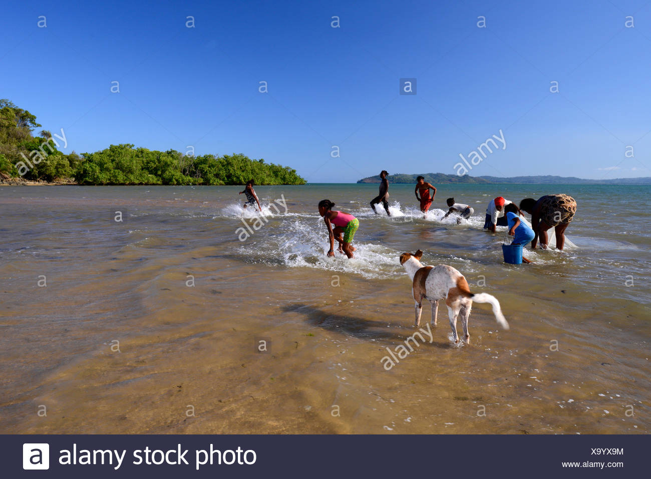 African women are fishing with a curtain, Madagascar, Nosy Be, Lokobe Reserva - Stock Image