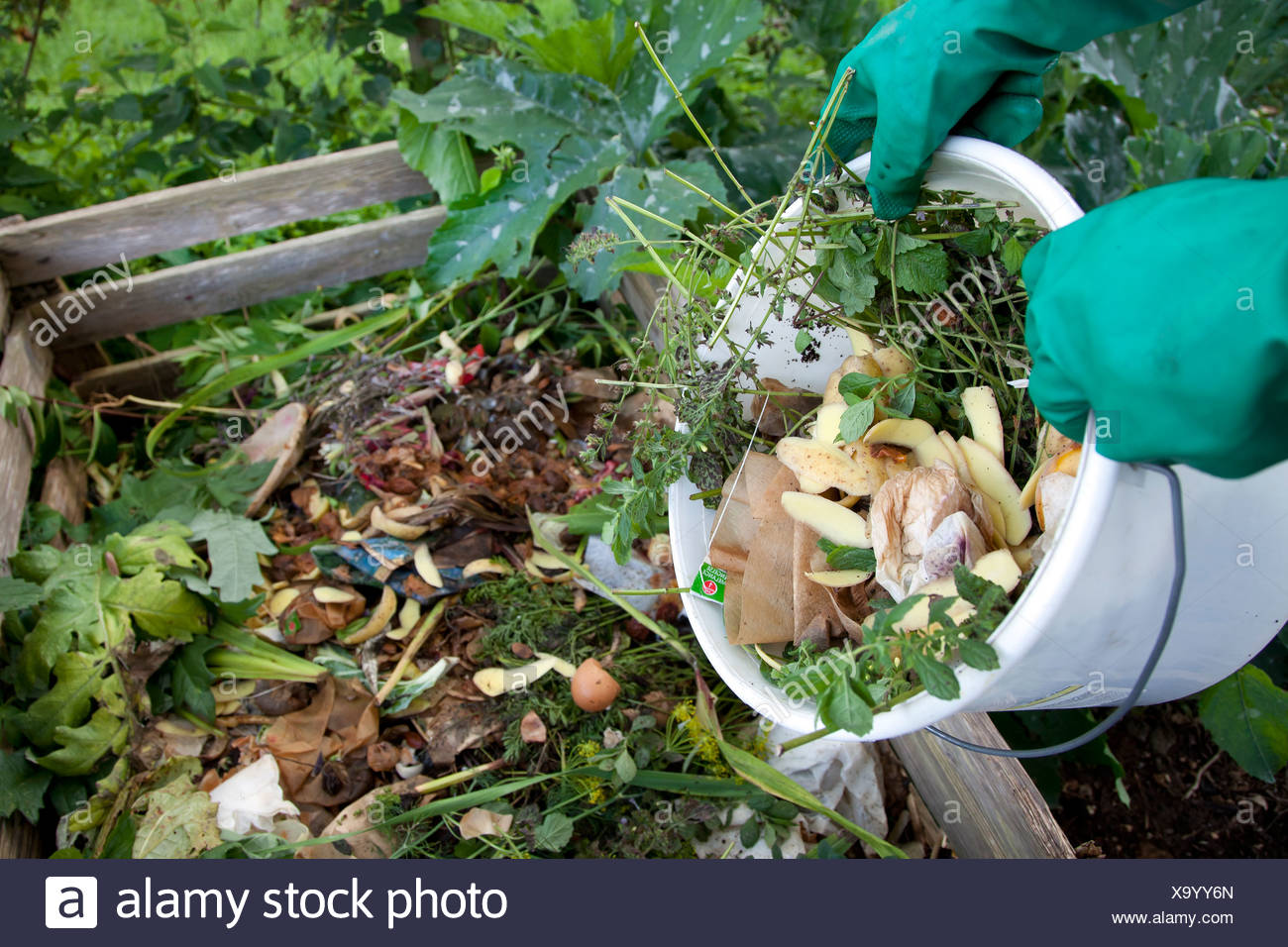 Organic waste, compost, compost heap, Germany, Europe - Stock Image