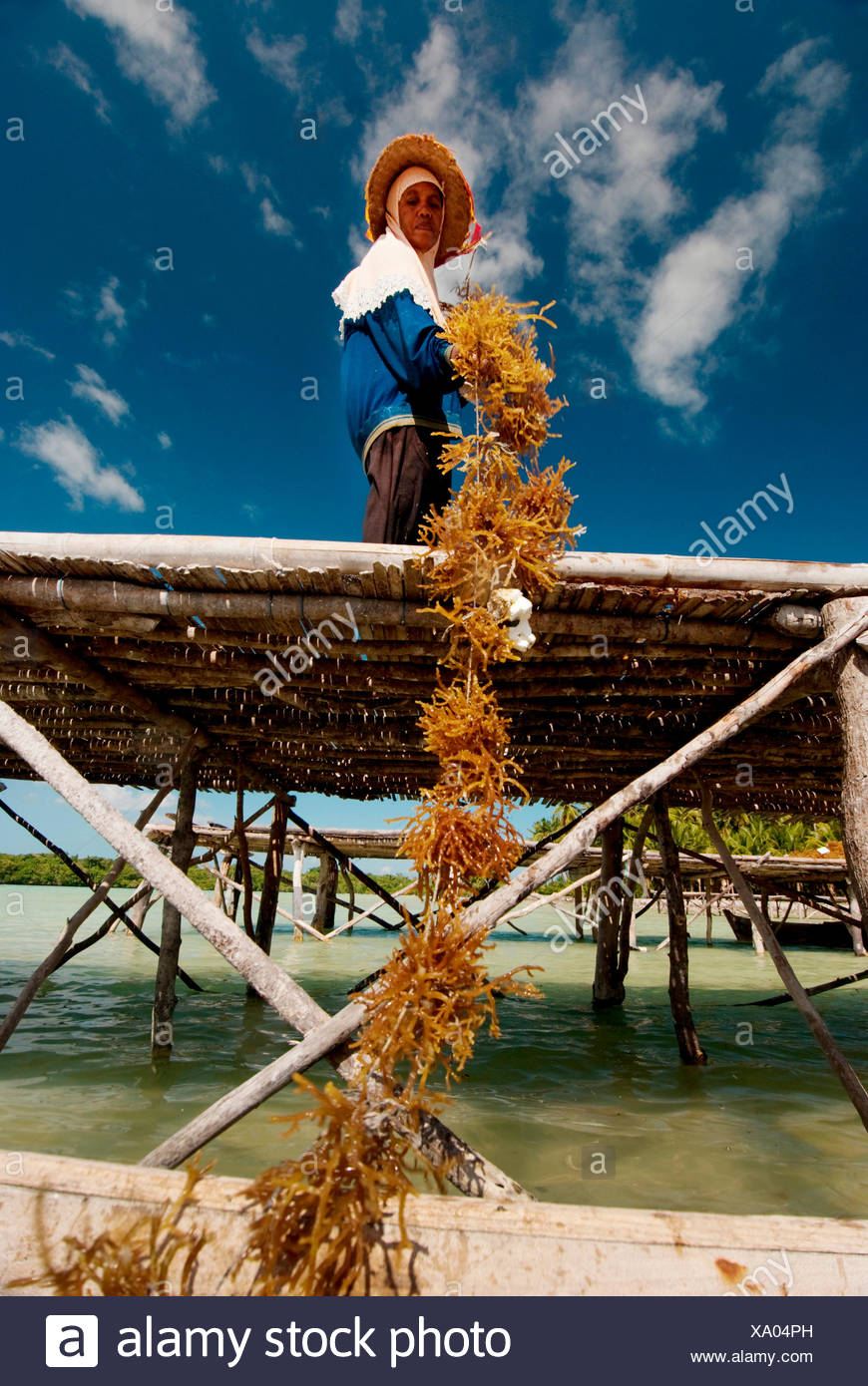 Wa Nuri is part of a cooperative of fisherman and aquaculture workers trying to create more sustainable practices in the Wakatobi region of Indonesia. Various projects through-out Indonesia where the international conservation organization The Nature Cons Stock Photo