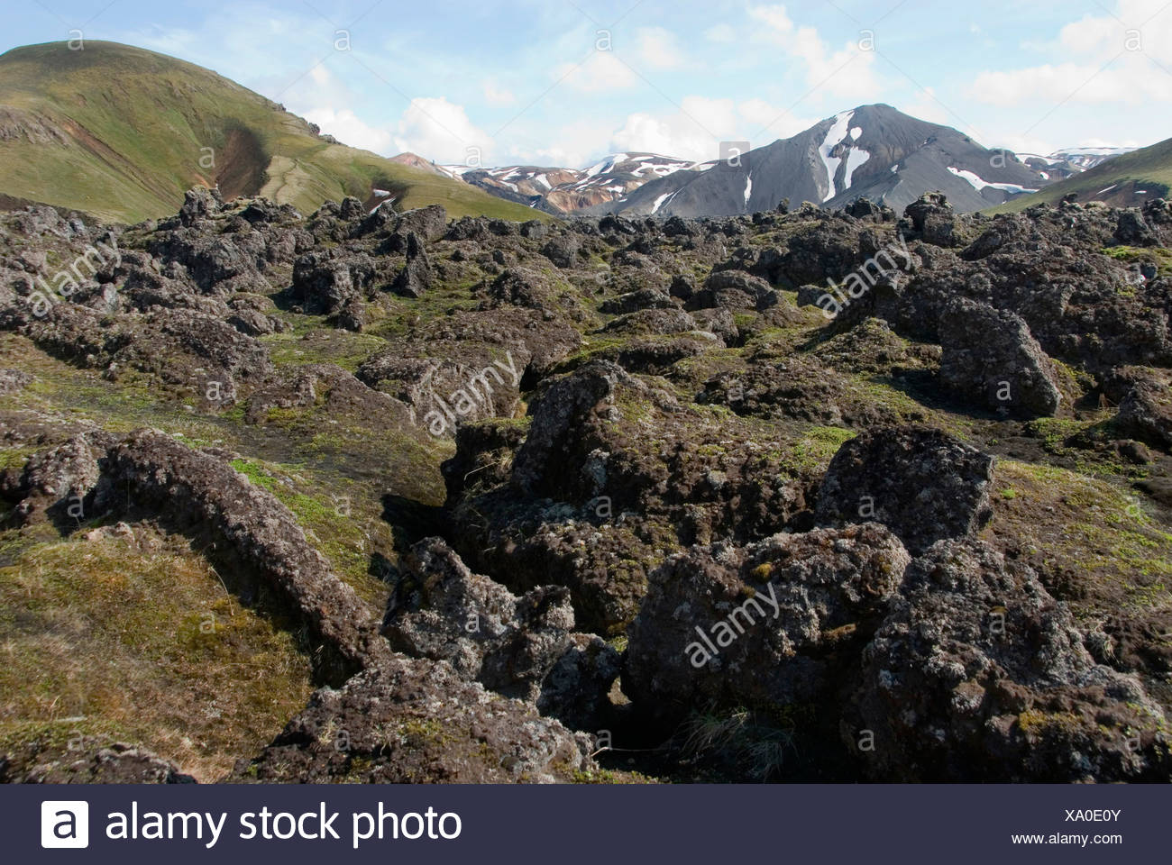 landscape with cooled down of stream of lava, Iceland, Fjallabak National Park, Landmannalaugar - Stock Image