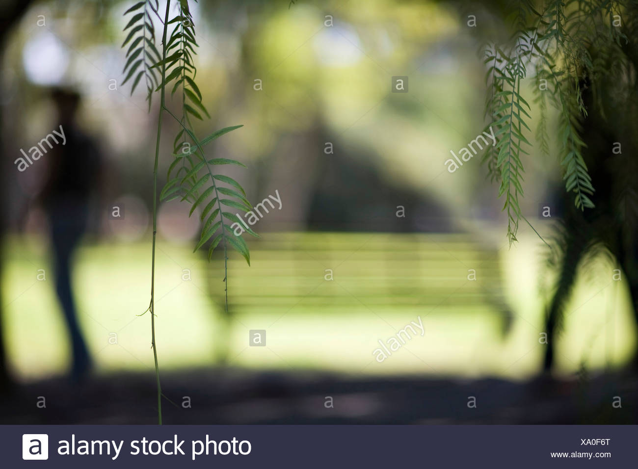 Couple separation - Stock Image