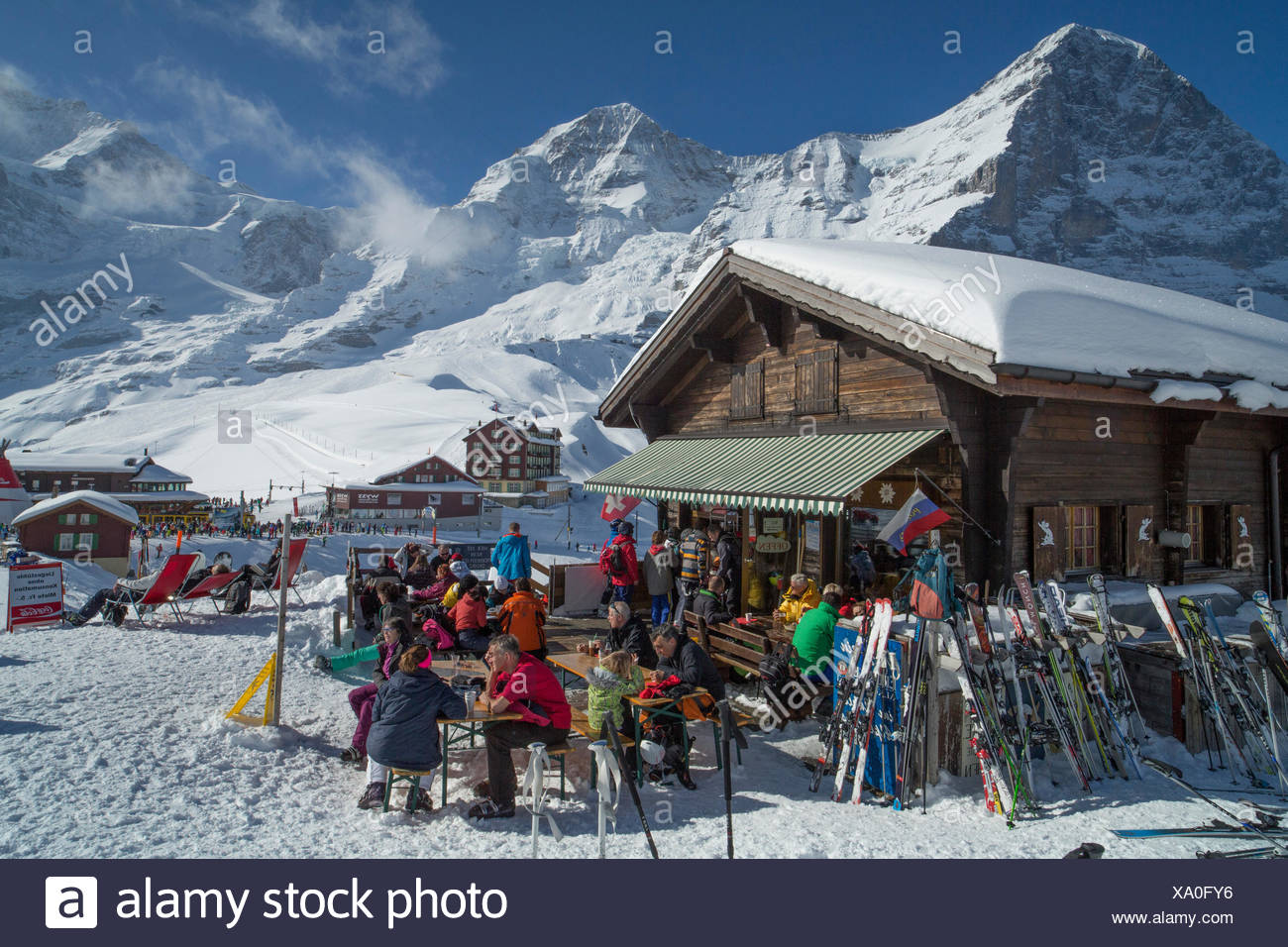 Ski, ski tourist, Kleine Scheidegg, Eiger, monk, Mönch, Jungfrau, mountain, mountains, ski, skiing, Carving, winter, winter spor - Stock Image