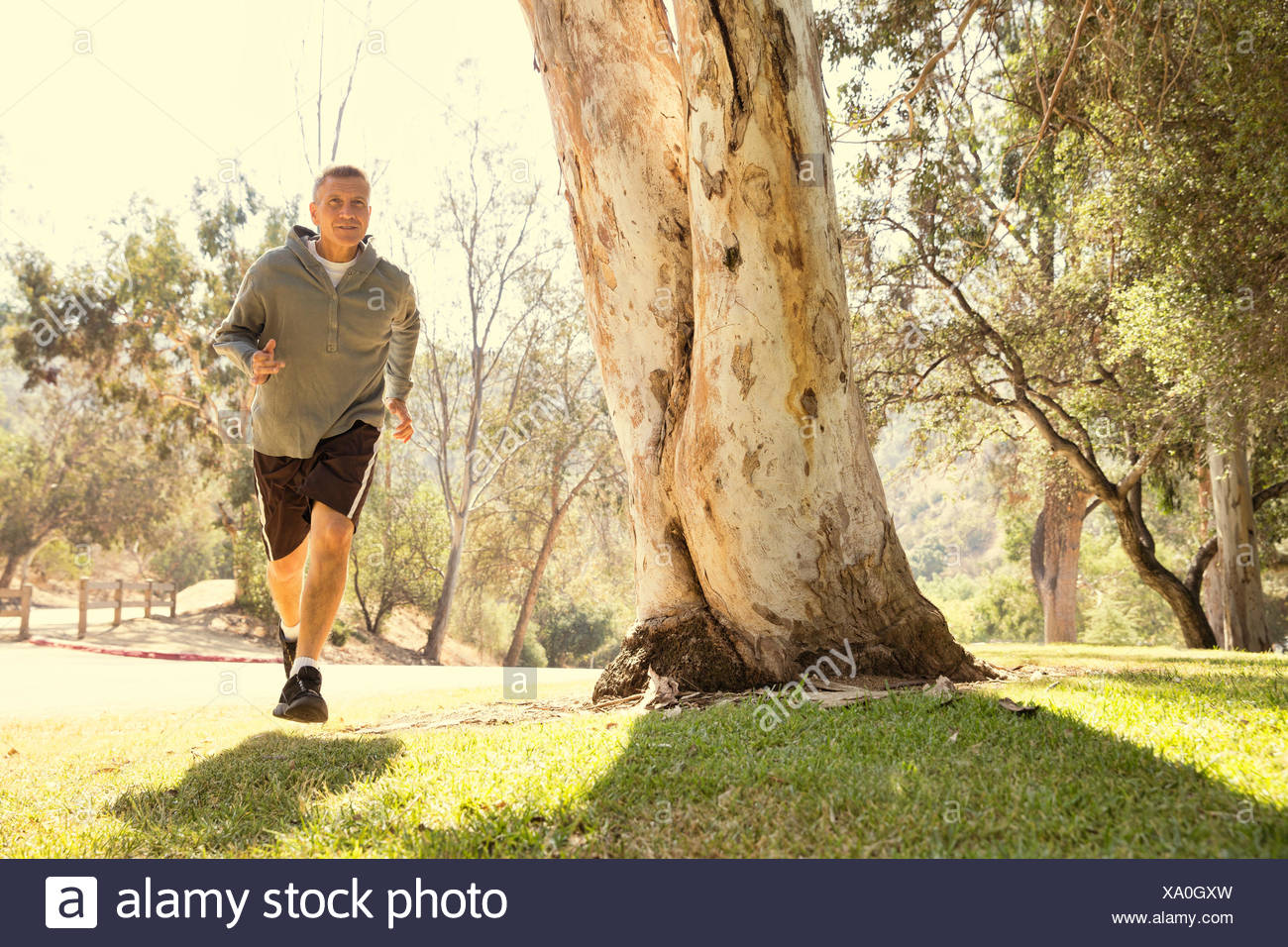 Mature man running through park - Stock Image