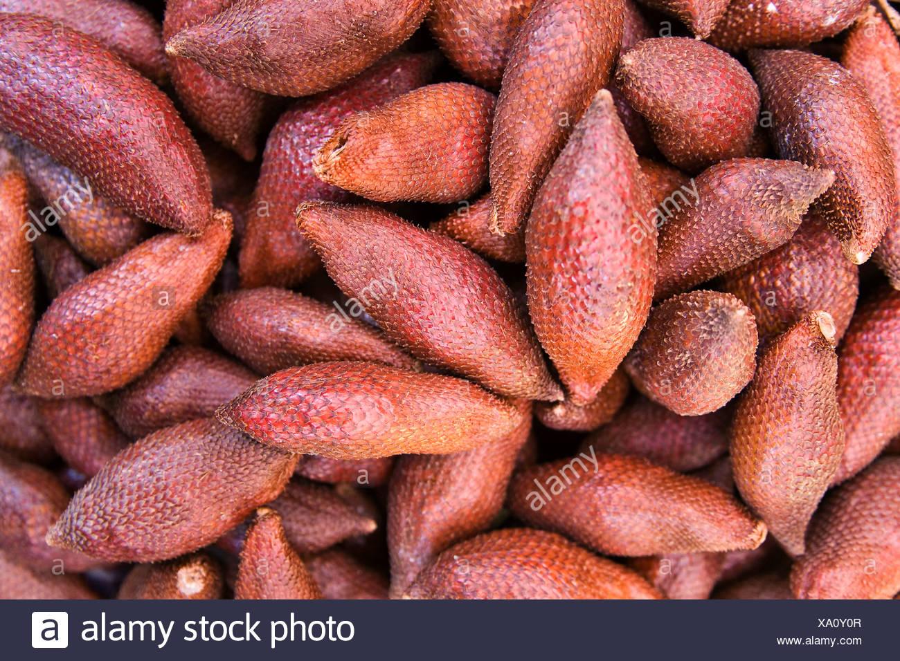 Salak Fruit or Snake Fruit (Salacca zalacca) - Stock Image