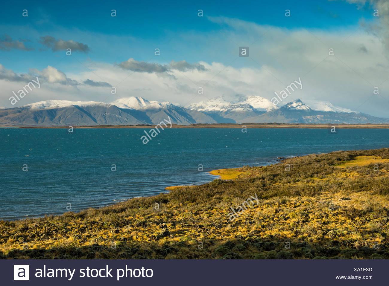 South America,Argentina,Patagonia,Santa Cruz,Puerta Bandera,Lago Argentino - Stock Image