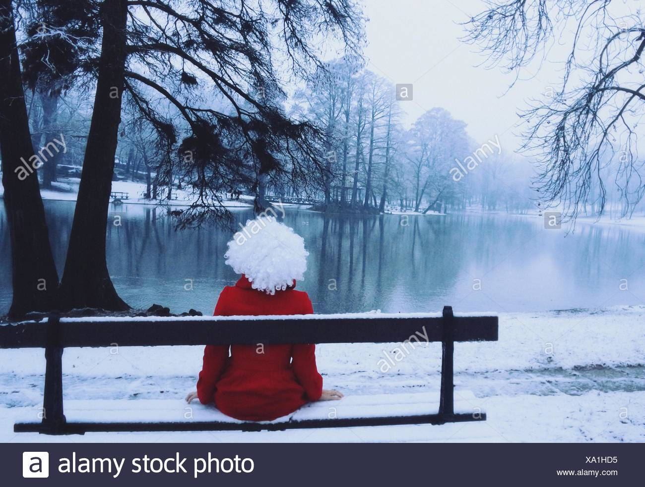 Rear view of young woman wearing red coat in snow covered park - Stock Image