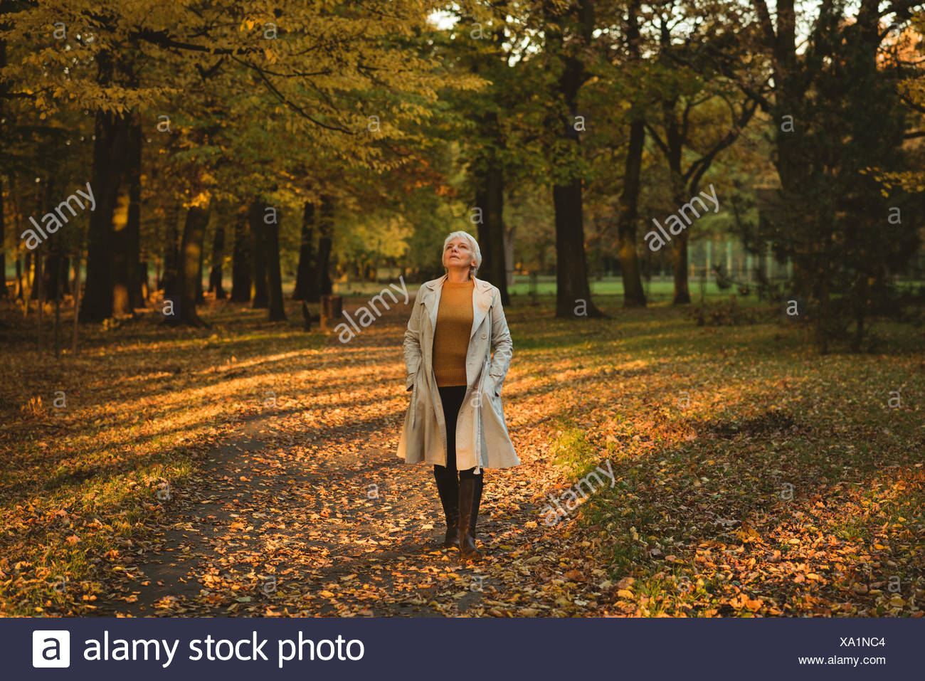 Thoughtful senior woman in jacket looking up in the autumn forest - Stock Image