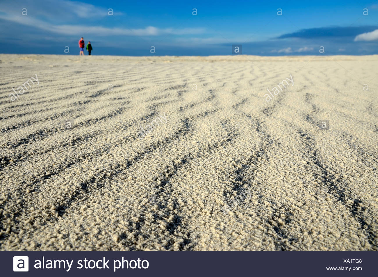 People walking in the vastness of the Kniepsand beach, Amrum Island, Nordfriesland, North Frisia, Schleswig-Holstein - Stock Image