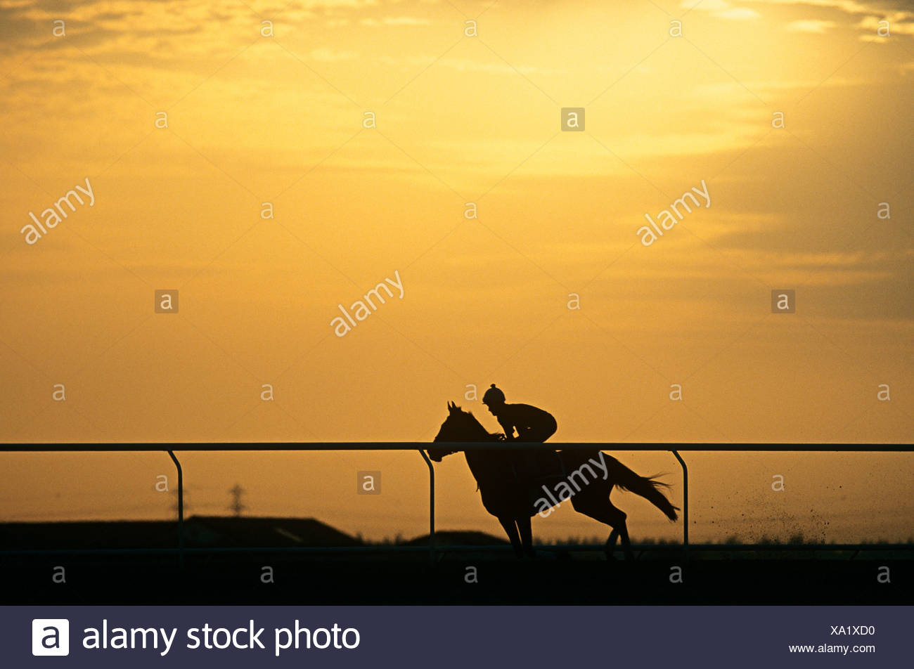 A silhouette of a jockey riding a horse Stock Photo