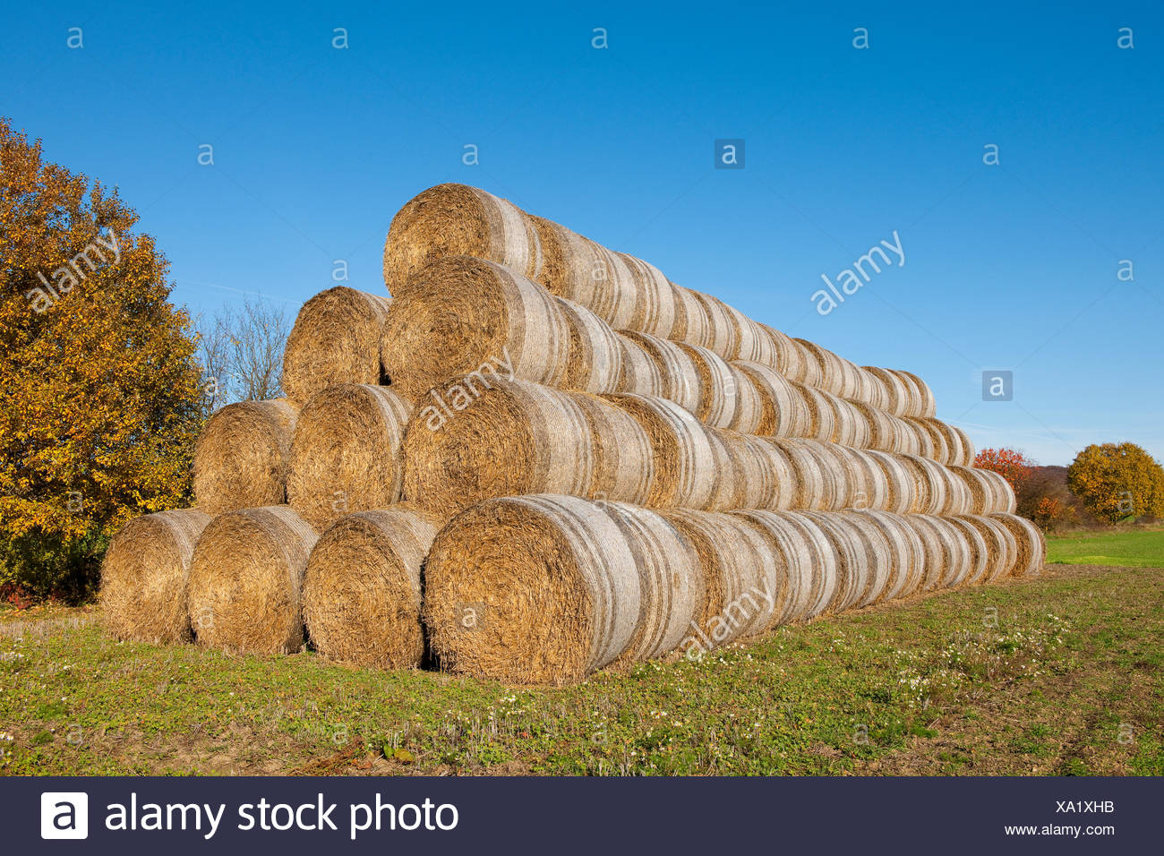Stacked straw bales, Thuringia, Germany - Stock Image