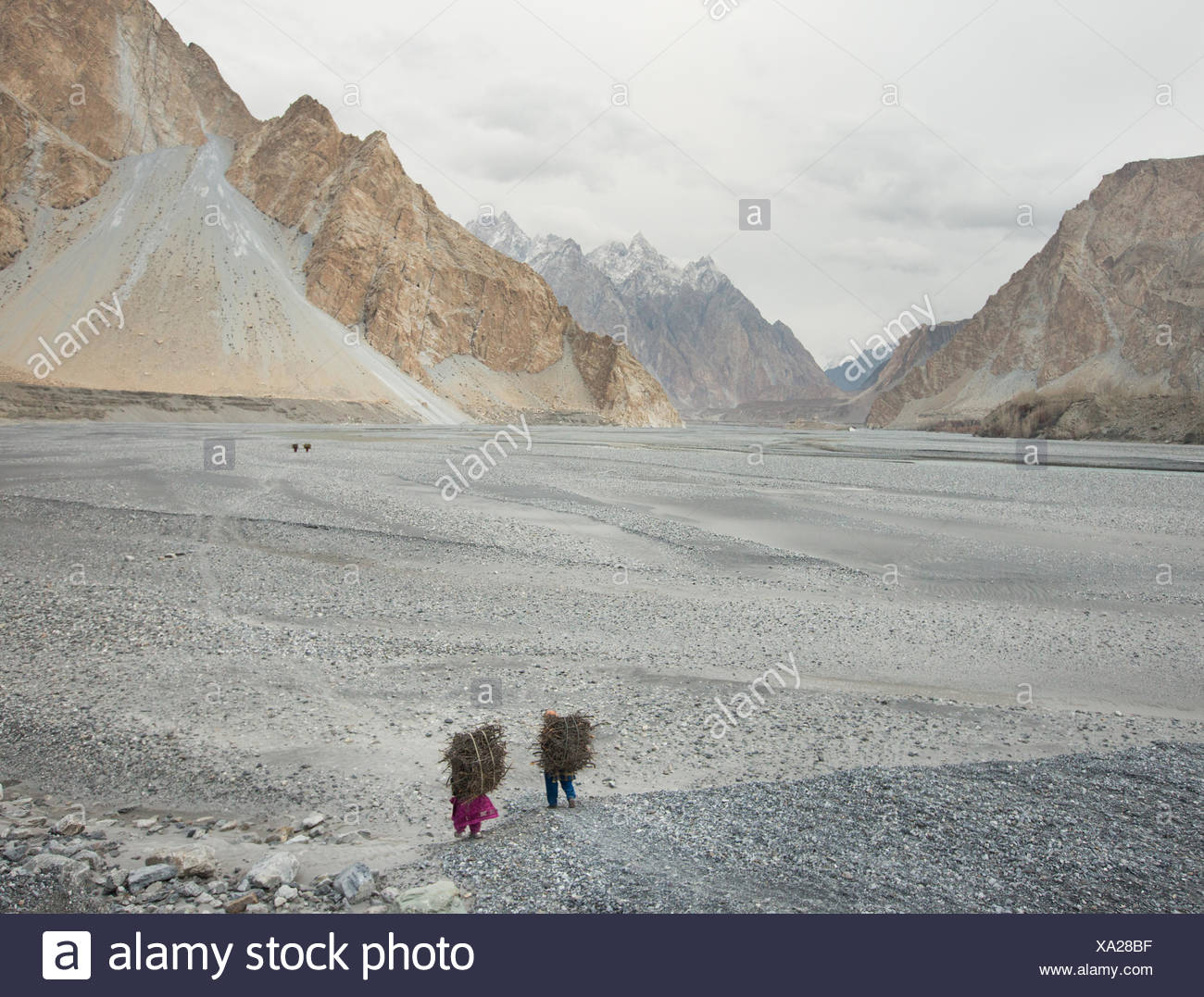 Women returning home after getting wood for cooking and heating, a two hour walk. - Stock Image