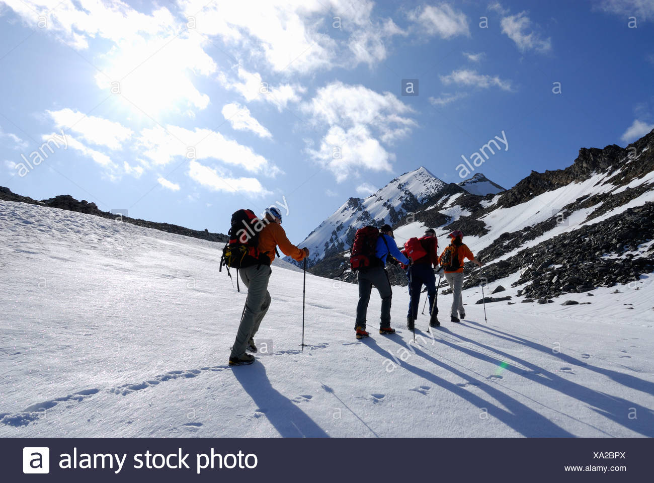 Four mountain hikers ascending to mount Hochfeiler, Zillertal Alps, South Tyrol, Italy Stock Photo
