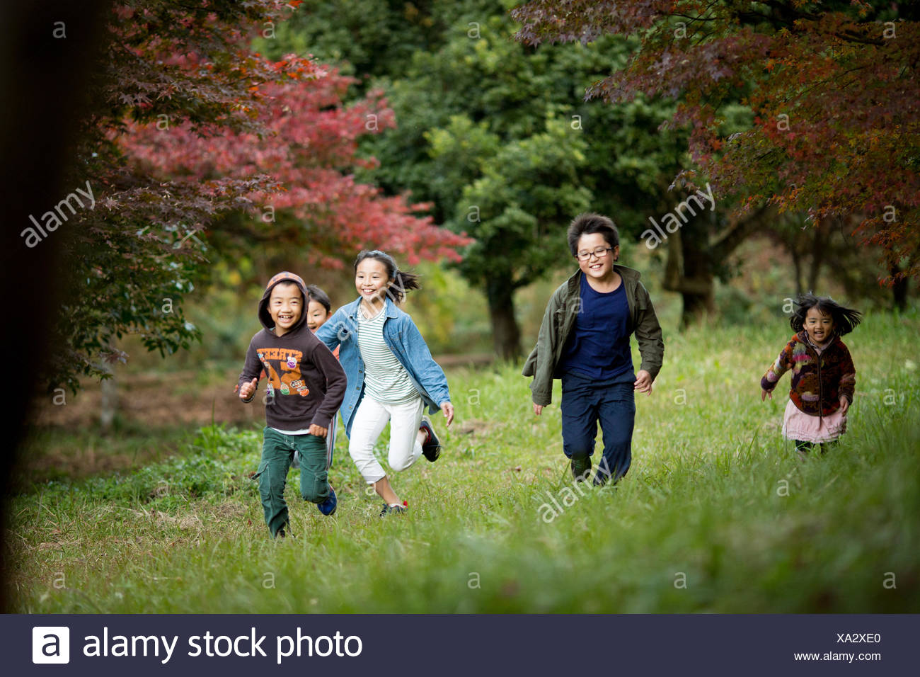 Japanese autumn foliage and children - Stock Image