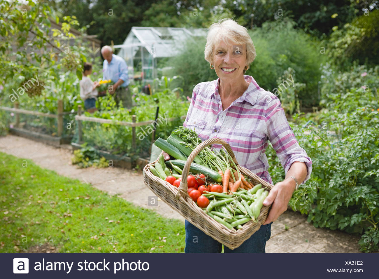 Grandmother With Basket Of Freshly Picked Vegetables - Stock Image