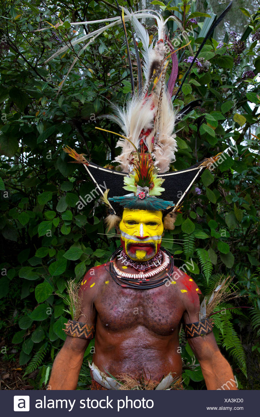 A Huli Wigmen of Papua New Guinea with his headdress made of Hair and Feathers - Stock Image