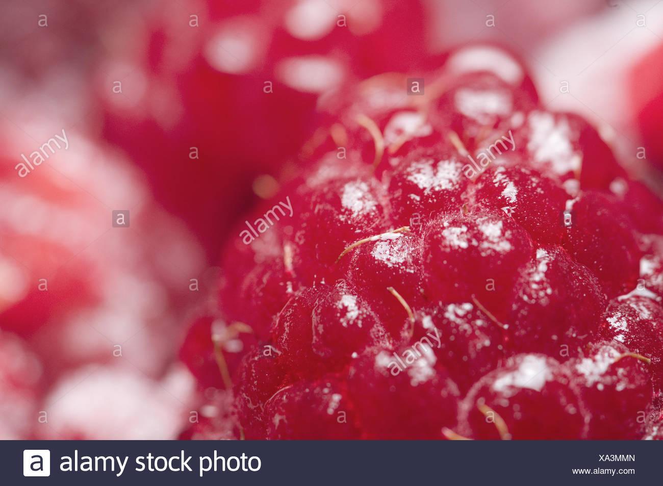 raspberries juicy detail Stock Photo