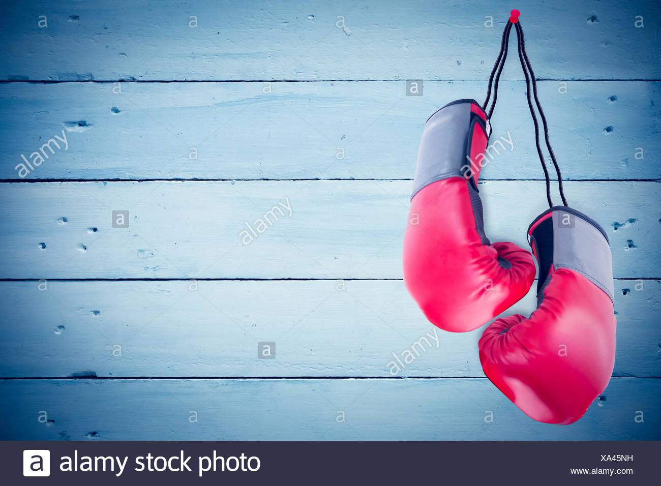 Composite image of boxing gloves attached to white background - Stock Image