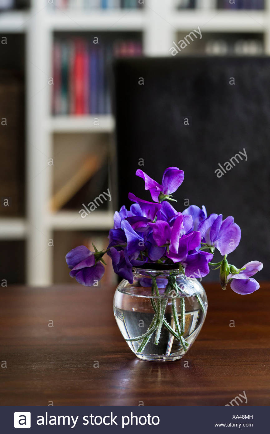 Vase with purple vech on a wooden table Stock Photo