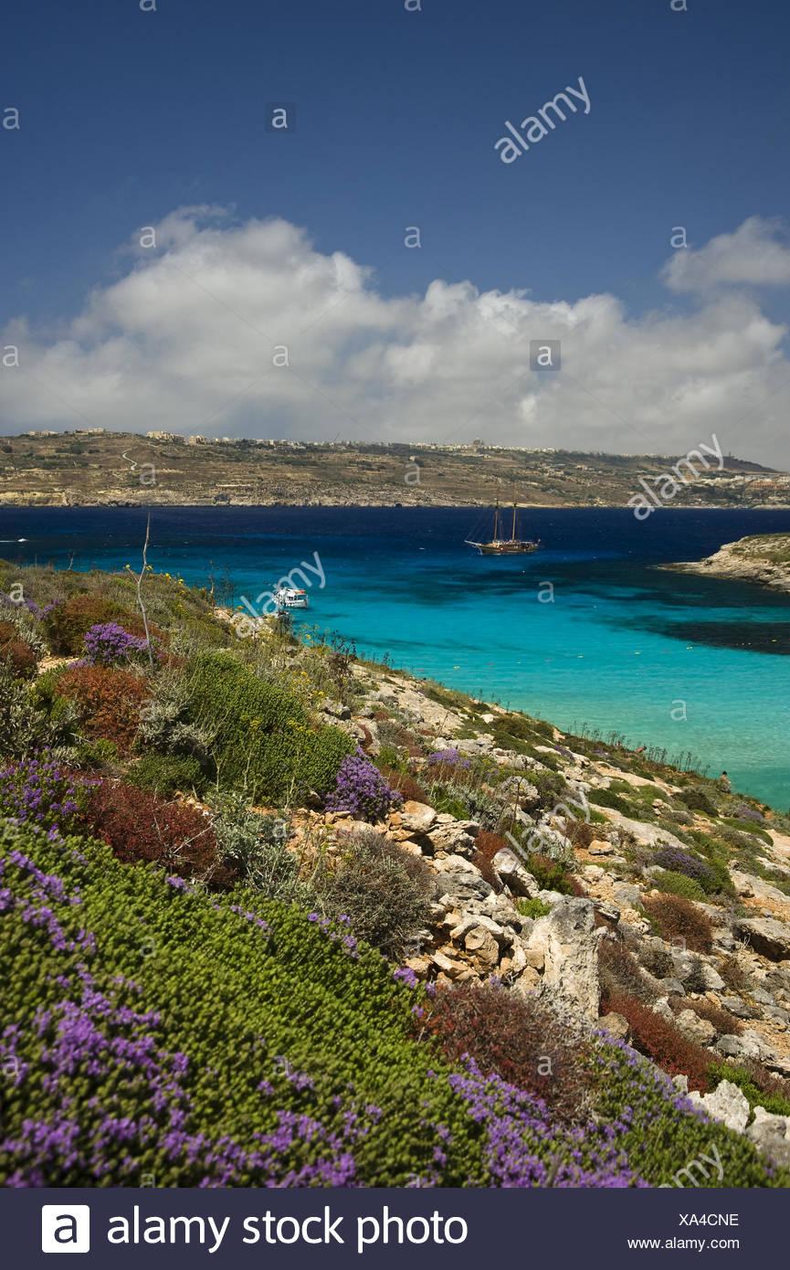 Malta - Stock Image