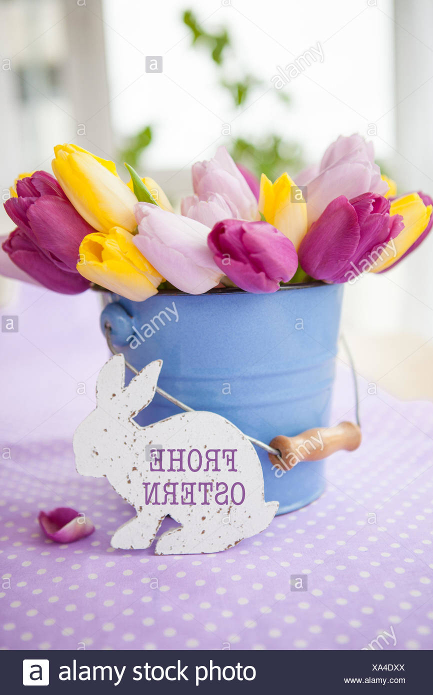 colorful tulips on purple Stock Photo
