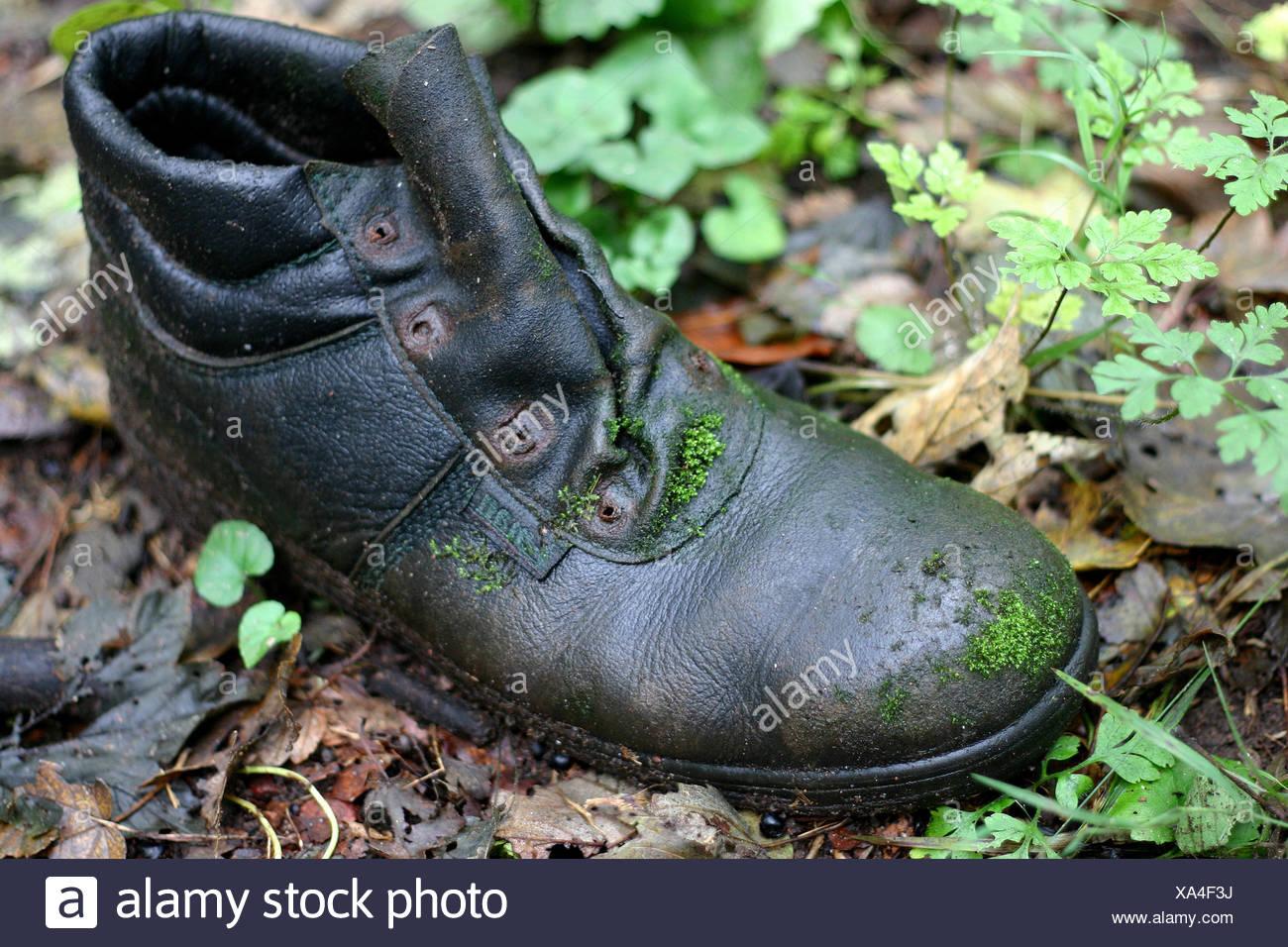boot,lost,mossy,shoe,old,ausgelatscht,ausgediehnt,arbeitsschuh Stock Photo